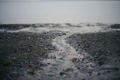 在海滩的小河 免版税库存图片