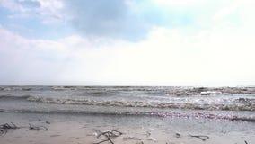 在海滩的小波浪断裂 英尺长度 海的波浪在秋天 慢的行动 股票视频