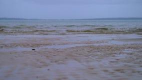 在海滩的小波浪 影视素材