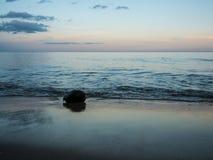 在海滩的干椰子在日落时间 库存照片