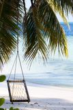 在海滩的摇摆 库存照片