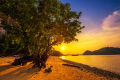 在海滩的日落甲米府的Ko洪海岛,泰国 免版税库存图片