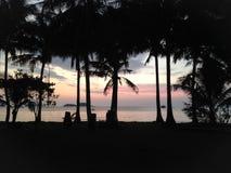 在海滩的日落,反对天空背景的棕榈树剪影 免版税库存图片