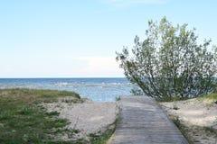 在海滩的木路 免版税库存图片
