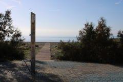 在海滩的木道路 免版税库存图片