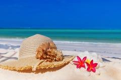 在海滩的桑给巴尔热带结构树 库存图片