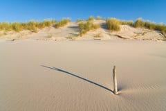 在海滩的沙丘在日落 免版税库存照片