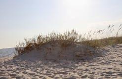 在海滩的沙丘 免版税库存照片