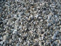 在海滩的海小卵石 免版税库存图片