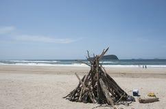 在海滩的漂流木头结构。 库存照片