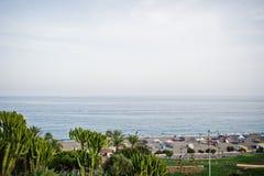 在海滩的激动人心的景色由有热带greene的海 免版税库存图片