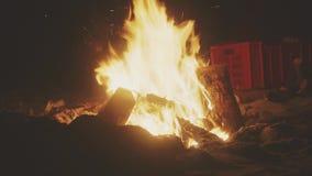在海滩的篝火 股票录像