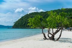 在海滩的热带假日 图库摄影