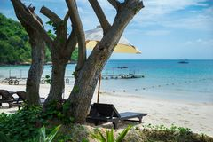 在海滩的热带假日 库存照片