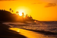 在海滩的热带日落与棕榈 库存图片