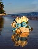 在海滩的玫瑰 免版税图库摄影