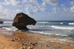 在海滩的珊瑚礁冰砾在Bathsheba 免版税库存照片