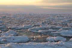 在海滩的石头波罗的海 库存照片