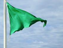 在海滩的绿色安全旗子:允许的游泳 库存图片