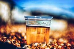 在海滩的美味的冰镇啤酒 免版税库存图片