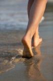 在海滩的美好的妇女行程在日落 免版税库存图片