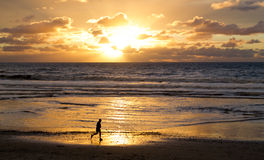 在海滩的赛跑者在日落 库存照片