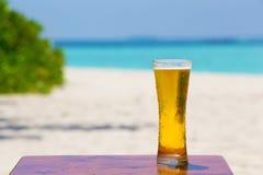 在海滩的饮料 库存图片