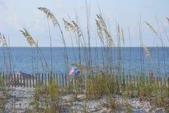 在海滩的麦子草 免版税库存照片