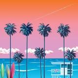 在海滩的oragzhevy天空与棕榈树 库存照片
