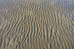 在海滩的Snad 库存照片