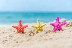 在海滩背景蓝天的五颜六色的海星 库存照片