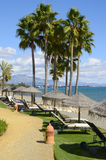 在海滩胜地的吊床 免版税库存图片