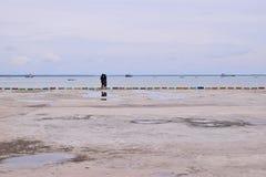 在海滩风景的可爱的浪漫夫妇 免版税库存照片