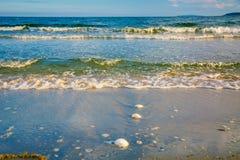 在海滩,在沙子的波浪,壳的明亮的金黄日落 库存图片