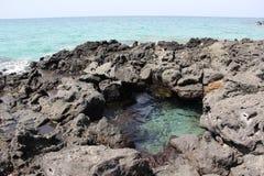 在海滩 海 沙子晃动夏威夷自然 晴朗的棕榈树水池 免版税图库摄影