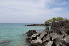 在海滩 海 沙子晃动夏威夷自然 晴朗的棕榈树水池 免版税库存图片