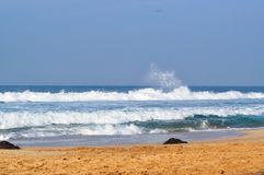 在海滩03的美丽的波浪 库存图片