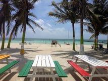 在海滩Caye填缝隙工的五颜六色的野餐桌 库存图片