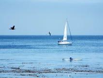 在海的一镇定的天 库存照片
