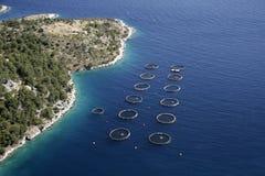 在海的圈子 库存图片