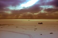 在海的太阳光芒 免版税库存照片