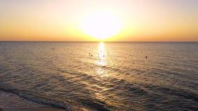 在海的日出 海鸥鸟飞行到往太阳的天空里 飞鸟蚂蚁日出天空 飞越t的海的鸟 股票录像