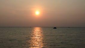 在海的日落在泰国 股票视频