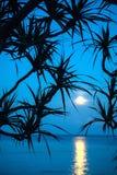 在海的月光 免版税库存图片