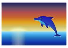 在海的海豚日落天空背景的 库存照片