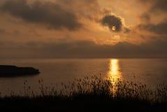 在海的温暖的日落有草和耳朵的在前景 库存照片