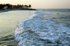 在海的看法挥动与海滨别墅和棕榈树在背景 免版税库存图片