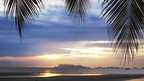 在海的美丽的景色通过棕榈树的分支 热带海滩的日落 库存图片