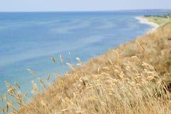 在海的背景的小尖峰 库存照片