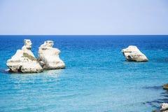 在海的自然雕塑 库存照片